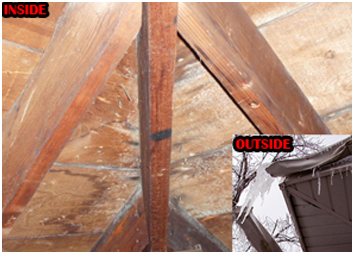 attic leak, roof inspection, free roof consultation, residential roofer, roof replacement