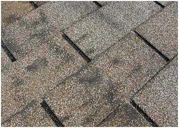 roof replacemenr, residential roof replacement, elmer's roofing roof inspection roof repair