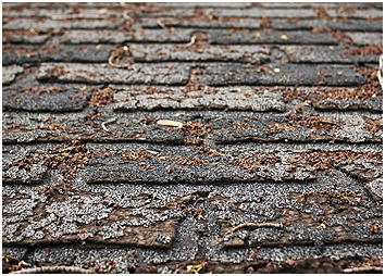 free inspection, cracked shingle, roof replacement, roof repair, roof inspection, roofing contractor