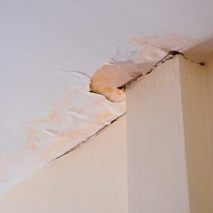 roof leaks clean roofer residential roofer elmer's roofing
